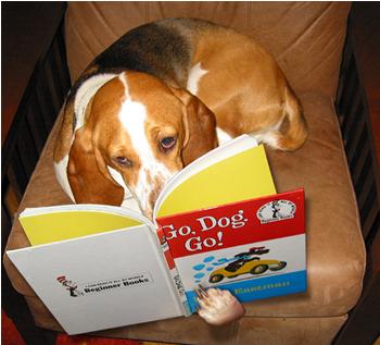 Fotografía de perro leyendo
